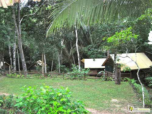 6527231285 4a3645b68e Glamping It Up In Belizes Jungles