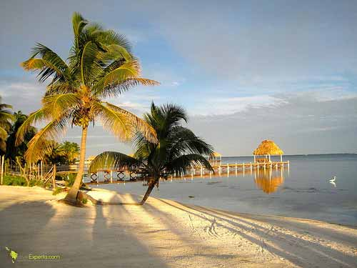 white sanded beach ambergris caye in belize