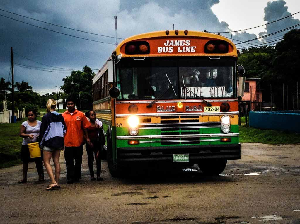 belize chicken bus