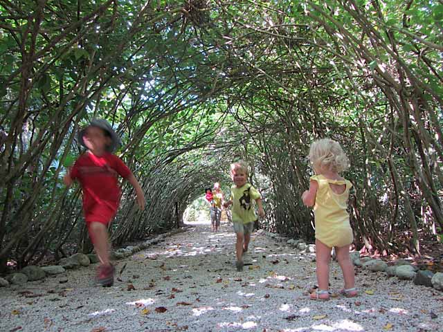 Running through the live, growing tunnel at the Belize Zoo