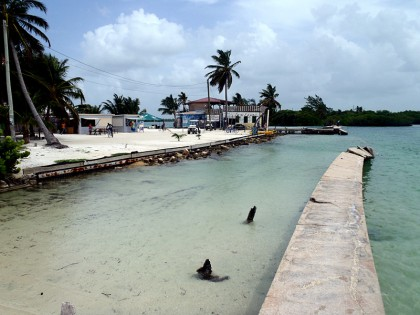 "Caye Caulker ""beach"""