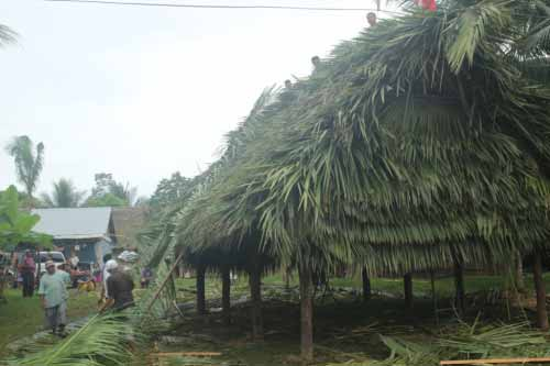 The completed thatch.