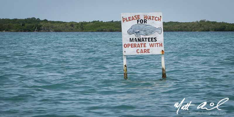 Chocolate's Handmade Signs | Swallow Caye Wildlife Sanctuary, Belize