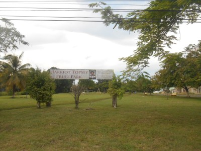 backpacking in belmopan