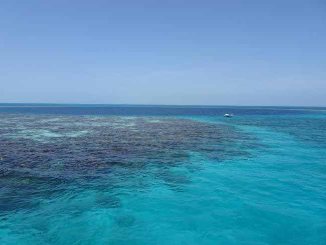 Overlooking the spectacular Great Blue Hole, a giant submarine sinkhole in the middle of Belize's Lighthouse Reef.