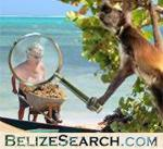 Search thousands of Belizean-only websites