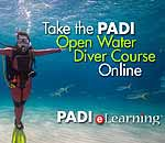 Click for excellent scuba lessons with Elbert Greer!
