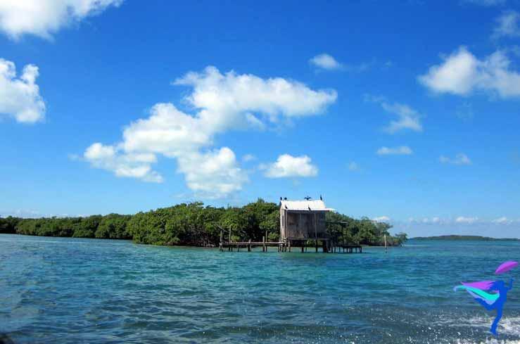 GoFish Belize
