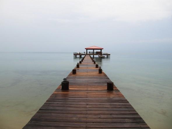 4110264649 61e3ef4e16 b 590x442 Roberts Grove: Seaside in Belize