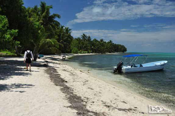 Caminhando nas praias de Half Moon Caye, perto do Blue Hole, na grande barreira de corais, em Belize