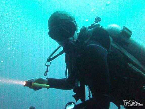 In�cio de mergulho no Blue Hole na grande barreira de corais de Belize