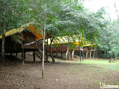6527210377 91f18ee209 Glamping It Up In Belizes Jungles