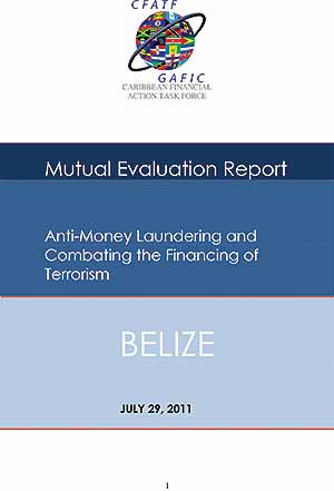 combating the financing of terrorism pdf