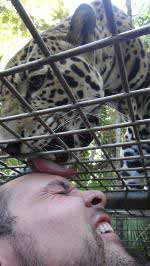 Students Pounce on Belize Zoo Project