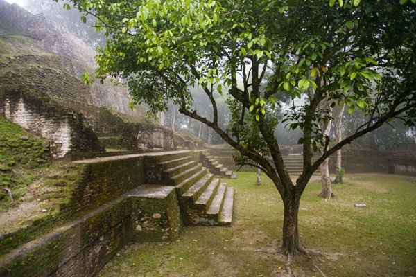 Cahal Pehc, Maya site, Belize