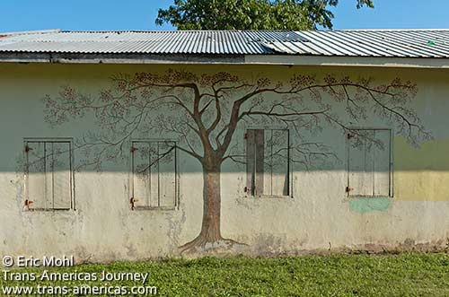 Ceiba tree painted on a school in Belize