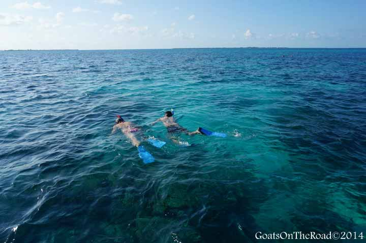 snorkelling caye caulker