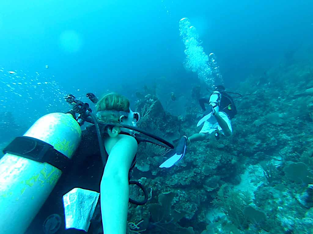 Scuba diving tranquility bay ambergris caye belize message board - Ambergris dive resort ...