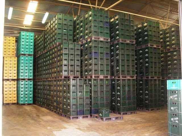 belikin beer distributor belize