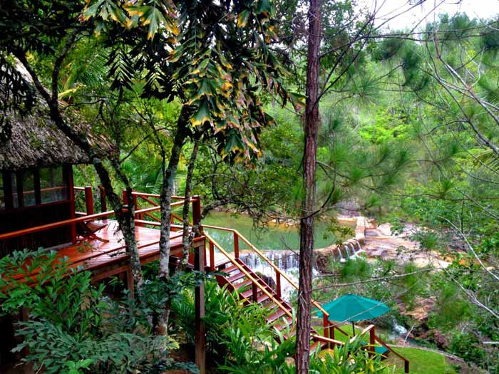 ShahBelizeRainforest