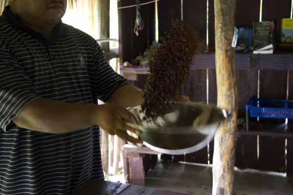 Maya Chocolate Making Process in Belize