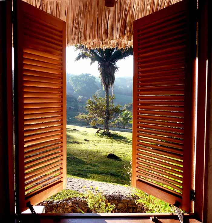 belize jungle lodge cabana view (2)