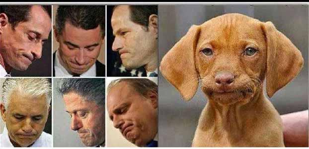 Dick Van Dyke Dog Food