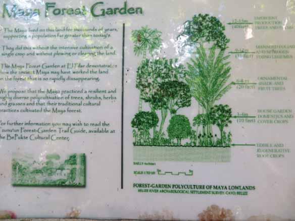 ForestGardenSign (1024x768)