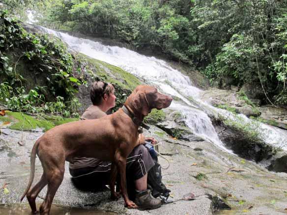 IMG_waterfall