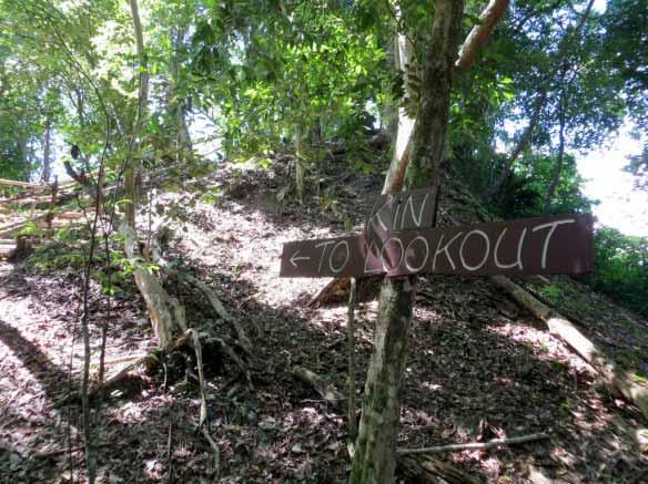 KinLookout (1024x767)