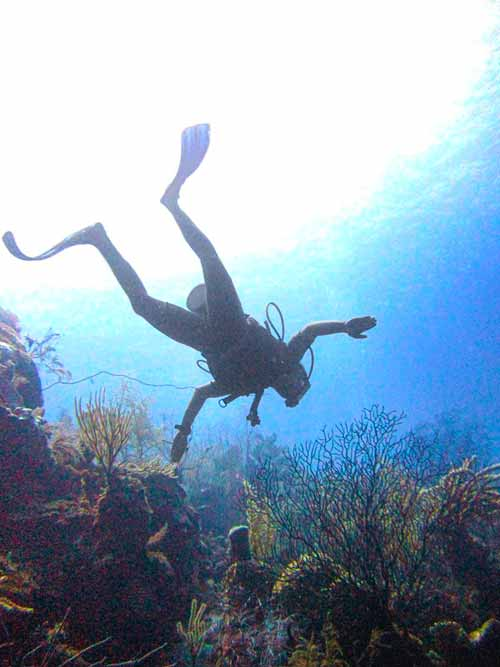 My First Dive in Belize