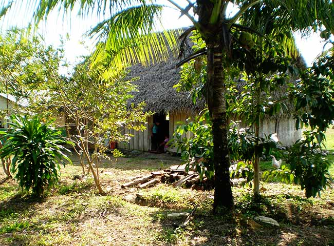 medina bank Maya village in Toldeo, Belize