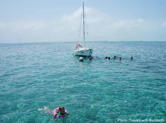 twb snorkeling