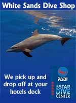 White Sands Dive Shop - 5 Star PADI Dive Facility - Daily diving, SCUBA instruction and Snorkeling