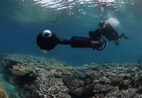 Stalk the Reefs With Google Maps for Under the Sea