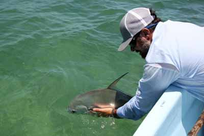Wicked Tuna Captain Dies | Autos Post