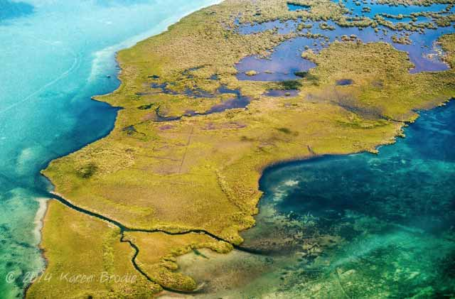Stunning Wetlands 5