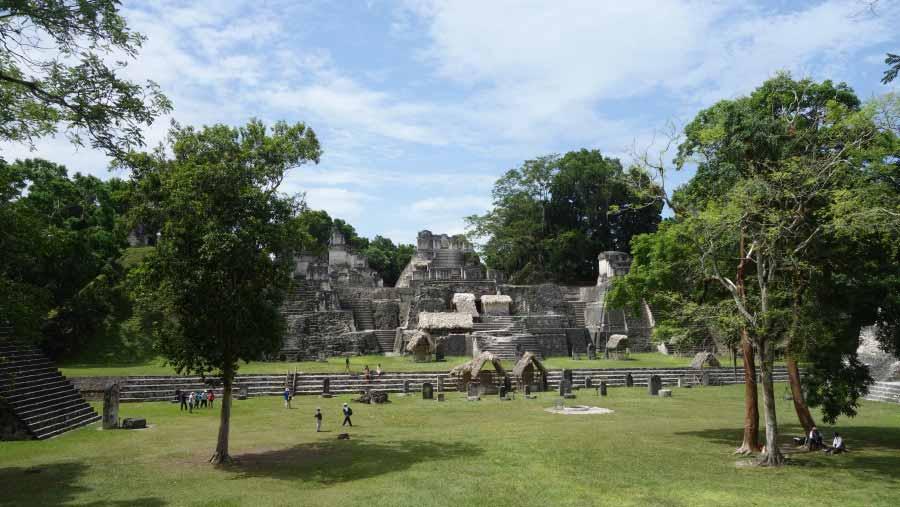 Tikal Northern Acropolis