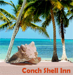 Conch Shell Inn: All rooms are right on the beach in the heart of San Pedro, so within walking distance to anything and everything!!