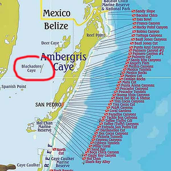 Leonardo DiCaprio Builds an Eco-Resort - Ambergris Caye Belize ...