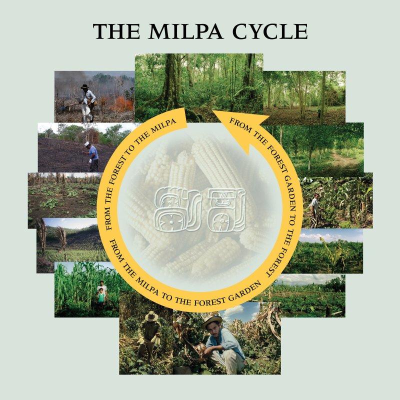 elpilarmilpacycle