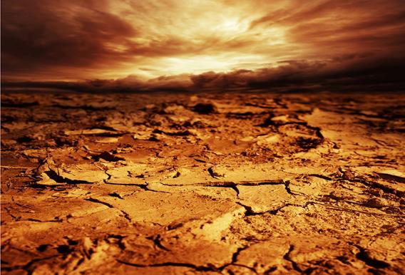 Ecosystem Collapse   news.mongabay.com