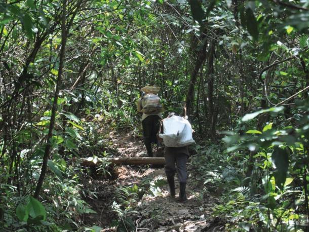 Participants carry stones on tumplines during experiment