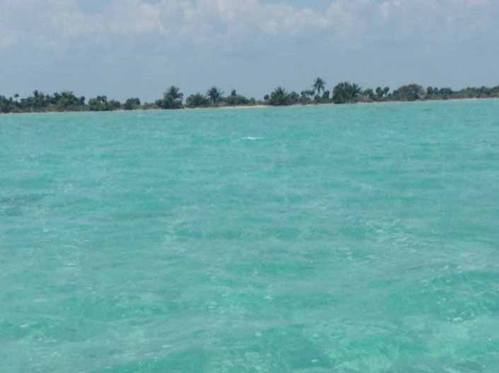Approaching Blackadore Caye by boat -- it is very long and narrow, only 104 acres of very low profile earth, sand and vegetation.