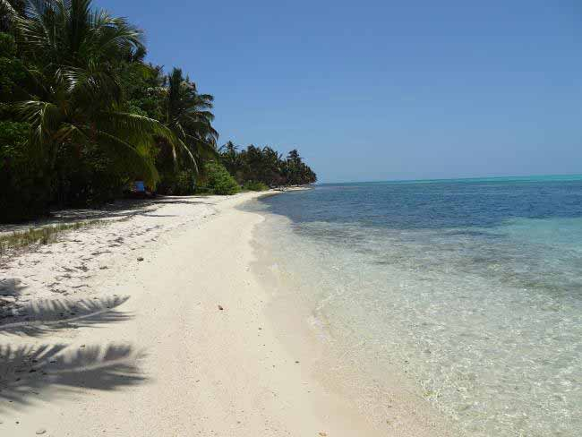 The idyllic island of Half Moon Caye is at the southeastern corner of Belize's famous Lighthouse Reef atoll.