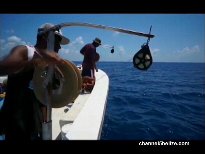 Training for deep sea fishing ambergris caye belize for Deep sea fishing belize