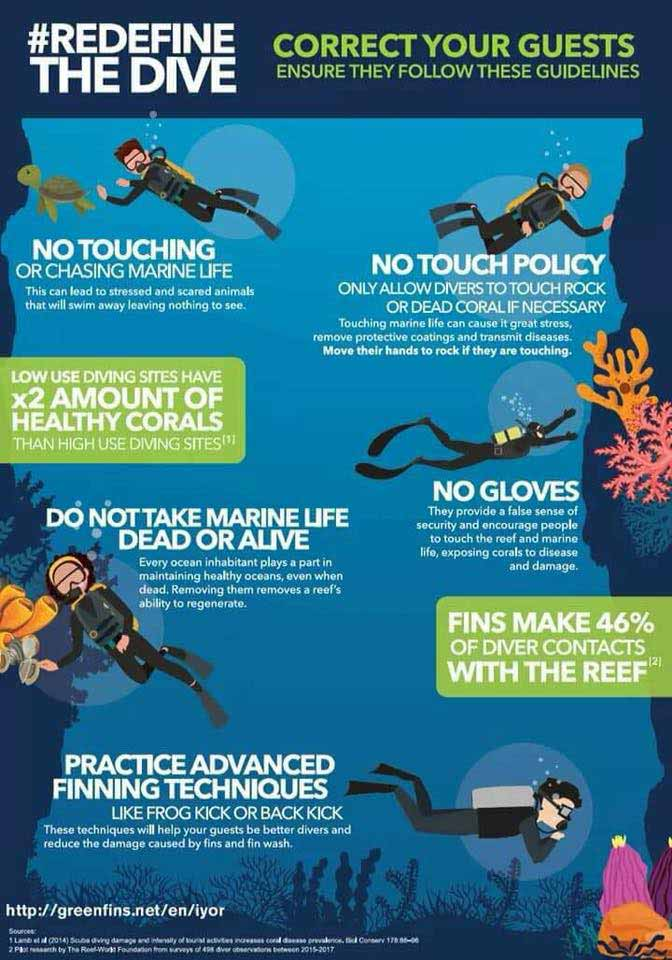 Scuba Diving Techniques: Do Not Touch!