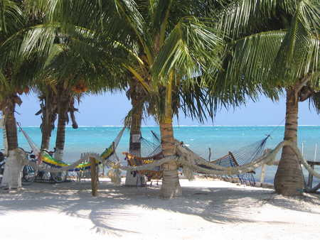 Good Lord... I wanna be back in Belize.