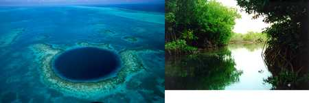 Blue Hole and mangroves