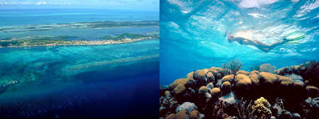 Aerial view of Ambergris from the east, and snorkeling at Mexico Rocks